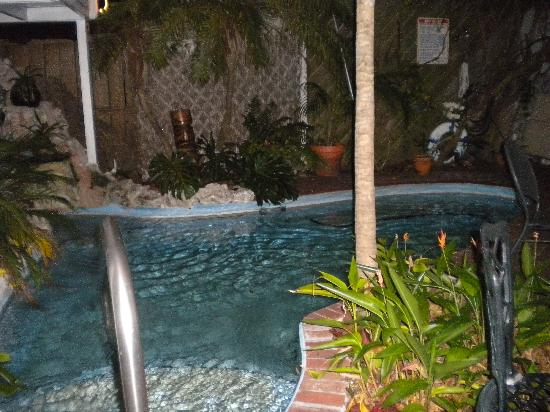 Garden House: Pool at night