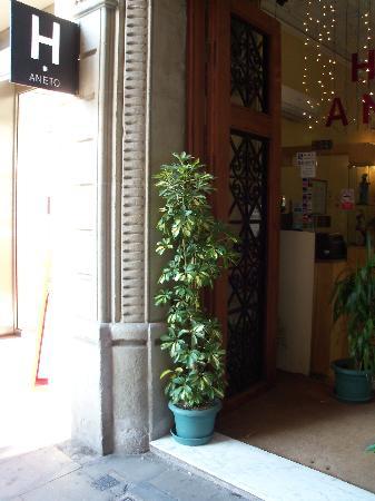 Entrata dell'hotel Aneto. Una chicca nel cuore della città!