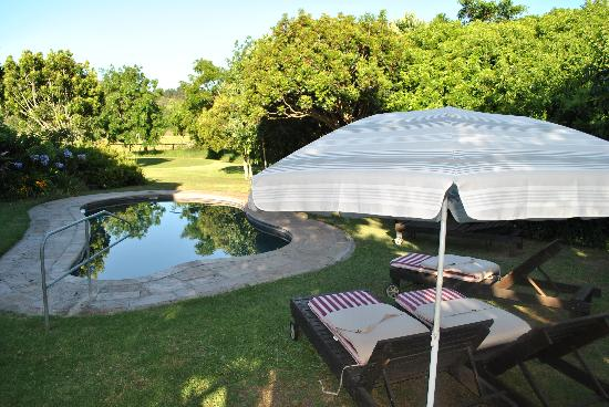 Bitou River Lodge: Clean pool!!!
