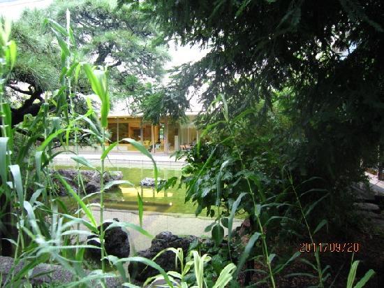 Otani Memorial Art Museum : 庭園より美術館を撮影