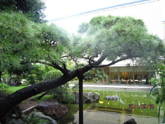 Otani Memorial Art Museum: 庭園より美術館を撮影