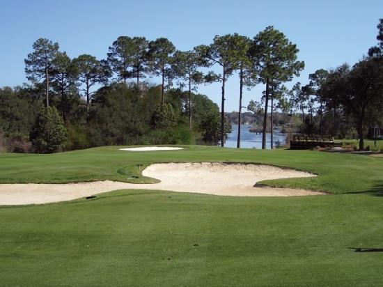 Marcus Pointe Golf Club: Beautiful shot look down from #3 fairway on to #2 tee box and Bayou Marcus