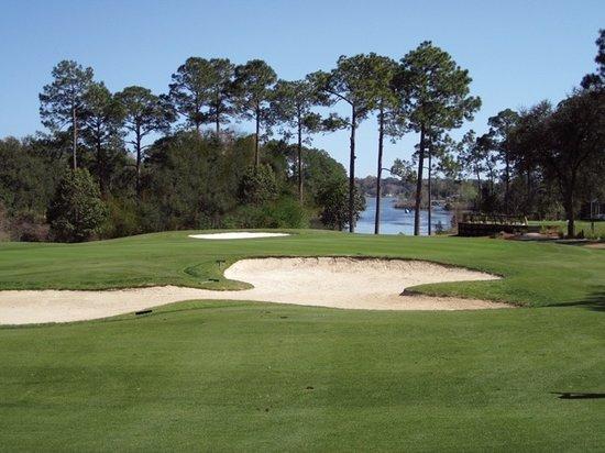Foto de Marcus Pointe Golf Club