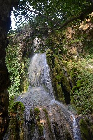 Laconi, อิตาลี: Al parco: cascata maggiore
