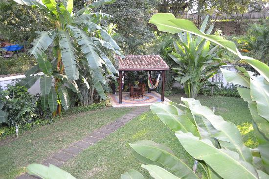 Villa Andalucia Bed and Breakfast: The private garden