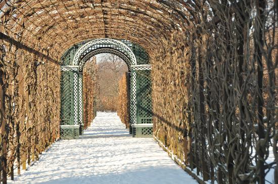 Wien, Østerrike: Garten Schloss Schönbrunn
