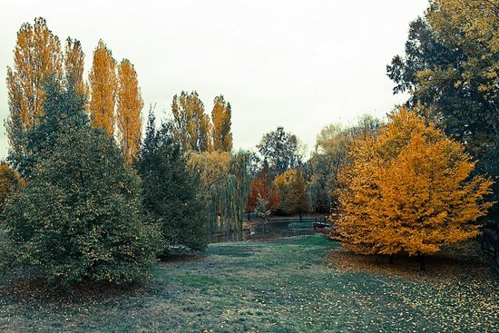 La Gaiana bed and breakfast spettacolare in autunno