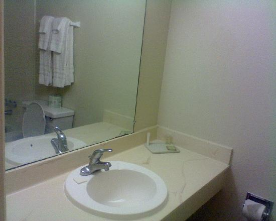 Super 8 by Wyndham Lake City: Bathroom Sink Area
