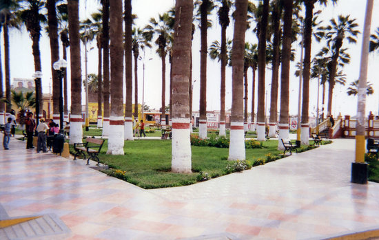 Chincha Alta, Peru: The Plaza del Armas (Main Square) where people go to relax, meditate, read, and chat. There are