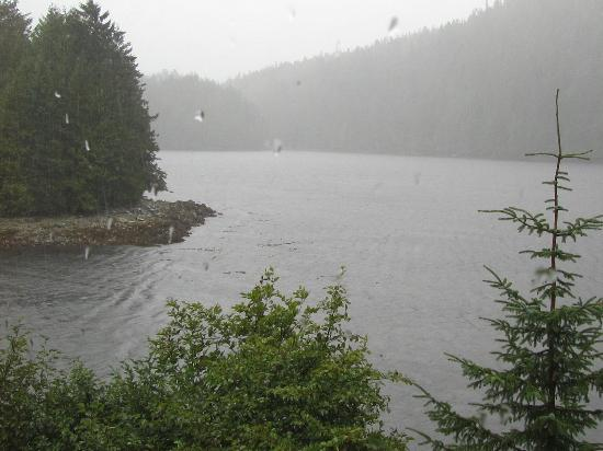 Spirit Bear Lodge: Water World