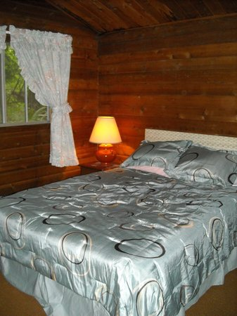 The Lodge Near Mount Rainier : one of the two bedrooms