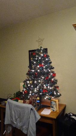 Antigonish Evergreen Inn: Our Christmas tree in our room!