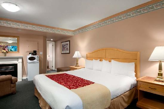 Travelodge Silver Bridge Inn: Honeymoon Jacuzzi Fireplace Suite
