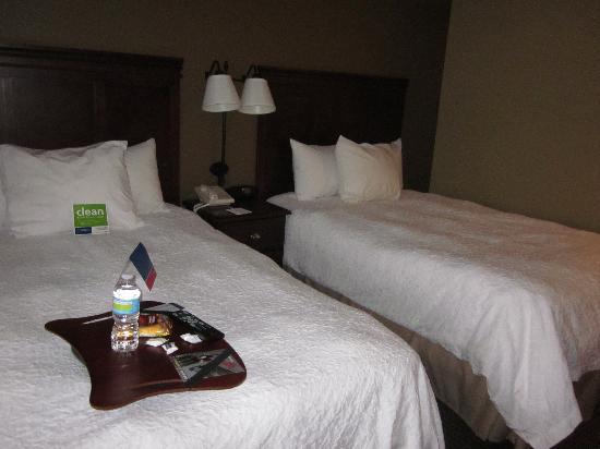 Hampton Inn Appleton-Fox River Mall Area: Bed