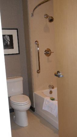 Cambria hotel & suites: tub & toilet