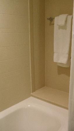 Cambria hotel & suites: shower, towel bar alcove