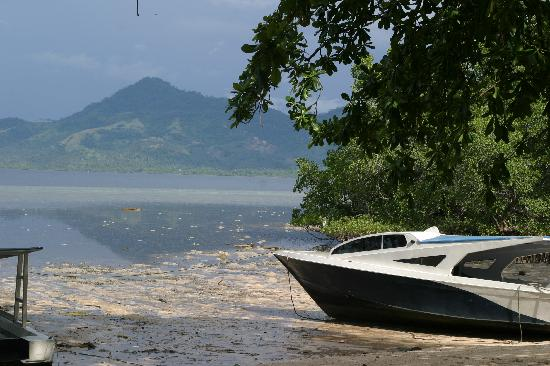 The Village Bunaken: View out to the ocean during low tide