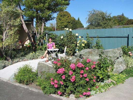 ASURE Sundowner Motel : Garden Scene