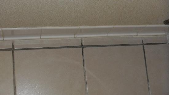 ويندهام جاردن ماديسون فيتشبيرغ: tile floor with crumbling grout