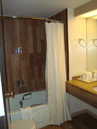 Best Western Downtown Sudbury Centreville: Bathroom