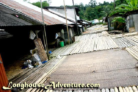 Longhouse Adventure Homestay: Annah Rais Longhouse