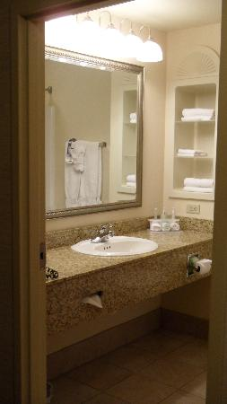 Holiday Inn Express Hotel & Suites Urbana-Champaign (U of I Area): sink/counter