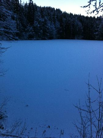 Albergo Edelweiss: lago ghiacciato