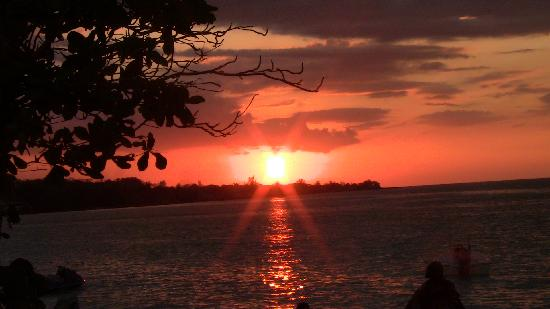 Shields Negril Villas: beautiful sunset