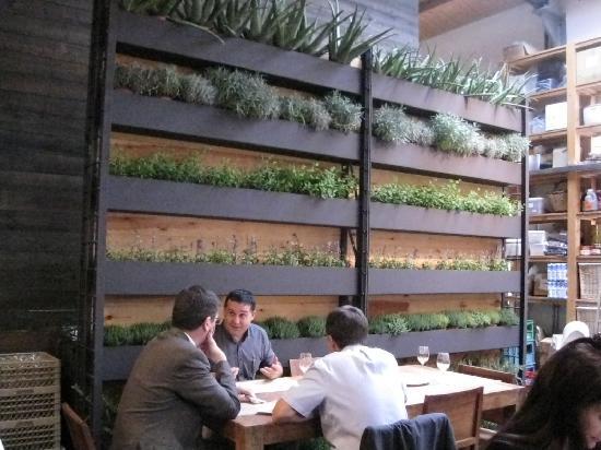 Parete con piante all 39 interno foto di cuines santa - Natura casa barcelona ...