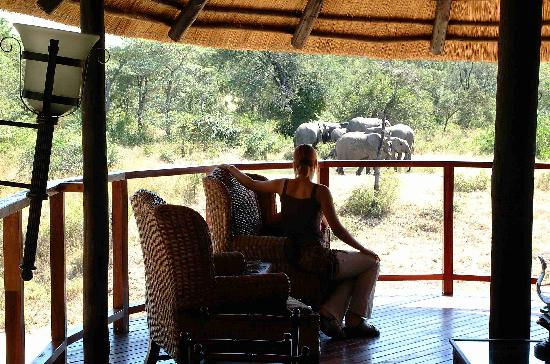 Shumbalala Game Lodge: The Lodge