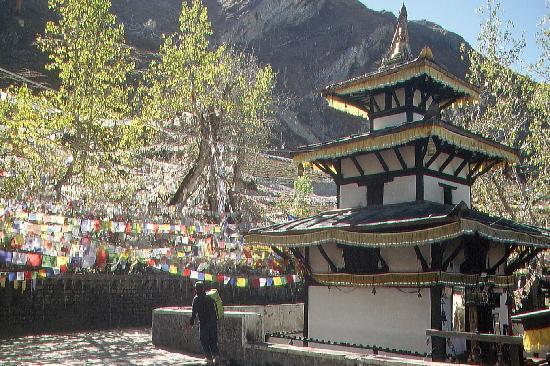 Muktinath Temple : im Tempelbezirk von Muktinath