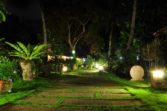 Hibiscus Garden Inn: Garden at Night