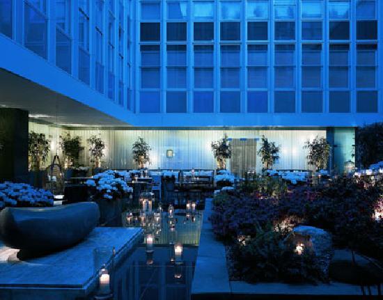 Long Bar at Sanderson : Terrace at Night