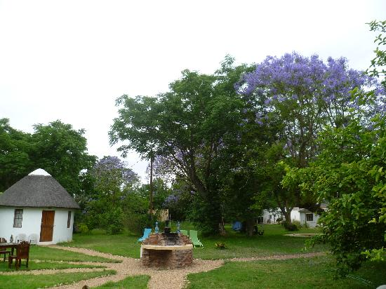 Addo African Home: le parc
