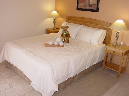 Dolphins View Guest House: Comfortable beds ................