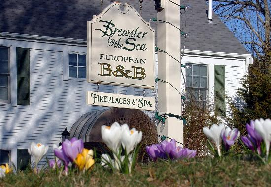 Brewster By The Sea: BBTS and Cape Cod are a marvelous destination all 4 seasons.