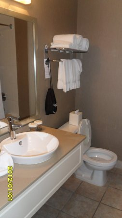 Hamilton Plaza Hotel and Conference Center: Bathroom 2