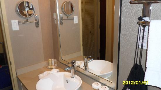 Hamilton Plaza Hotel and Conference Center: Bathroom 1
