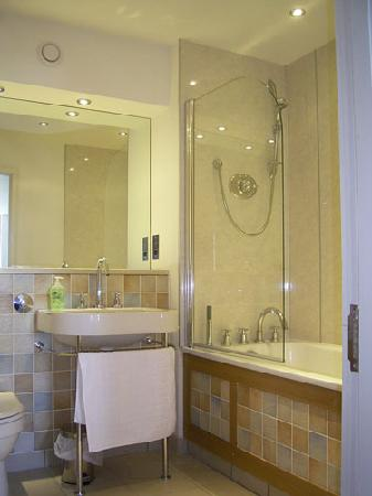 Bridge Street Apartments: shower/bath 401