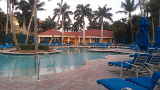 The Ritz-Carlton, Naples: The pool