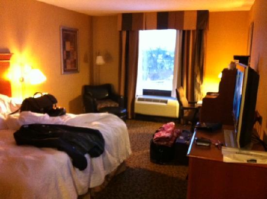 Hampton Inn Utica : Room overview