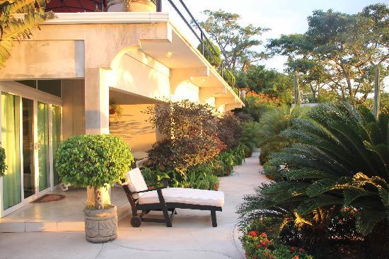Orquidea del Sur: The four rooms