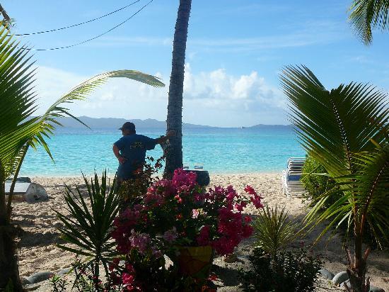 Sandcastle Hotel: Beautiful beaches