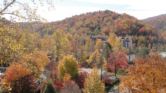 Laurel Inn Condominiums: Smokies from the room