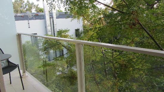 Y Hotel: Backyard