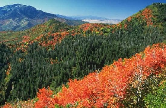 Payson, UT: Nebo Loop Scenic Byway
