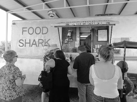 Food Shark: Waiting on lunch