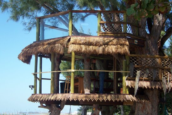 Angelinos Sea Lodge: the new tree house