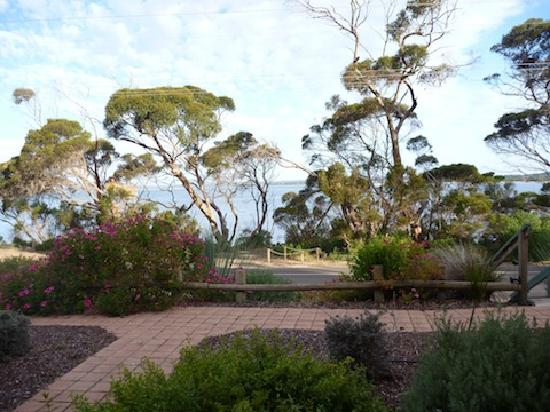 ‪‪Mercure Kangaroo Island Lodge‬: View from the room's patio‬