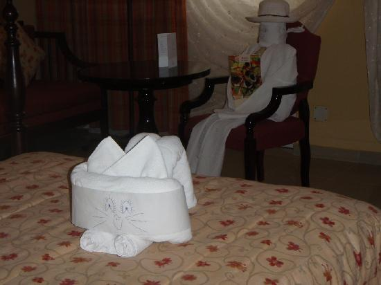 Iberostar Grand Hotel Trinidad: Cat towel